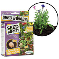 Seed Bombs - Throw and Grow Plants