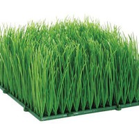 "Artificial Wheat Grass- Fake Soft PVC Plastic Decorative Wheatgrass: Ornamantal Flower Arranging & Home Decor - 6""x6""x4"":Amazon:Home & Kitchen"