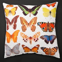 Indoor/Outdoor Colorful Collection Photo-Printed Lava Pillow - Plow & Hearth