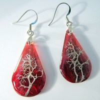 Reindeer Lichen Earrings Moss Jewelry Plant Jewelry -1 by Chaerea