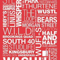 Washington University in St. Louis Pride Print  - Fun Prints - Wall