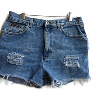 High Waisted Denim Shorts Distressed Jean Shorts Vintage DKNY Tumblr Hipster