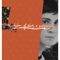 The Perks of Being a Wallflower 11x17 inch poster