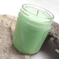 Duck Farts scented Soy Candle - Fluorescent Soy Candle -- 8 ounce Jar