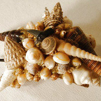 Natural Sea Shells Hair Clip A Beauty Must See by dorothybroome