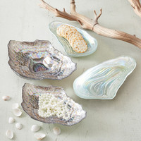 Shell Plates design by Twos Company | BURKE DECOR