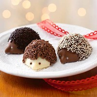 Chocolate Hedgehog Truffles