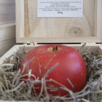 Red apple fruit gift soap in wooden box by Scentcosmetics on Etsy
