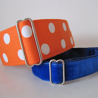 Polka Dot Martingale Collar, 2 Inch Martingale Collar, Florida Gators, Orange Greyhound Collar, Polka Dot Dog Collar, Greyhound Martingale