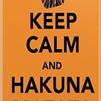 Keep Calm and Hakuna Matata iPhone  Case