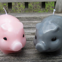 PIG Candle (1 color)