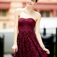 Shine Lace Dress