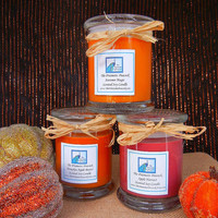 Fall Fragrance Soy Candle Trio - Apple Harvest Autumn Magic and Pumpkin Apple Butter 12oz Status Jars