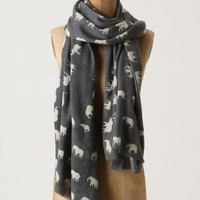 Elephant Salute Scarf - Anthropologie.com