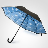 Blue Sky Umbrella at Firebox.com