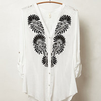 Avani Buttondown