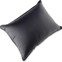 Quixote Goose Down Pillow - Free Shipping at REI.com