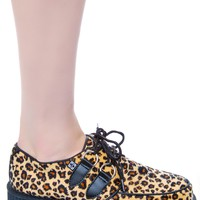 Leopard Round Low Creeper