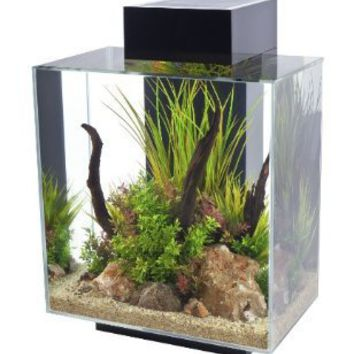 Amazon.com: Fluval Edge, 12 gallon Aquarium with 42-LED Light, Black: Pet Supplies