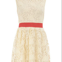 Lemon and coral lace dress - Dorothy Perkins United States