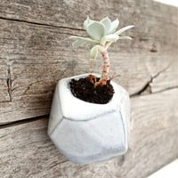 Angled B&W Wall-hanging Planter