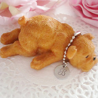 Resin English Bulldog With Initial Tag Collar Gold Or Brown Color