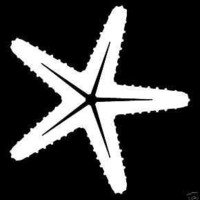 "Star Fish Vinyl Graphic Decal WHITE 5""x 5"" 