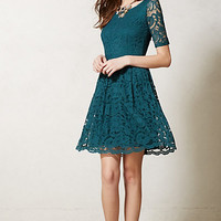 Foliage Lace Dress