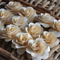 SALE $1.50 only for one dozen large birch roses. Limited time offer.