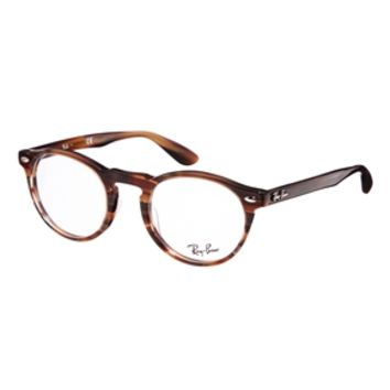 Ray-Ban Round Glasses