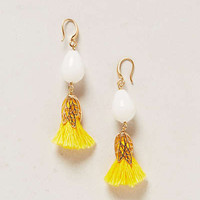 Candied Tassel Drops