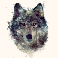 Wolf // Persevere  Art Print by Amy Hamilton