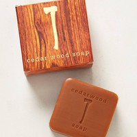 Cedar Wood Soap Bar