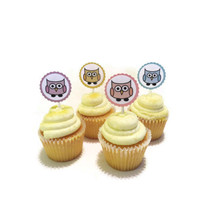 First Birthday Party Decor - Baby Shower- 1st Birthday - Pastel Owl Cupcake Toppers - Pack of 12