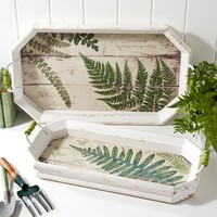 Fern Tray, Large - The Afternoon