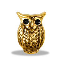Gold Owl Locket Charm for Locket Necklace or Bracelet (HHLD-037)