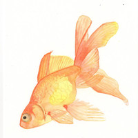 Original watercolor Painting - Goldfish 2