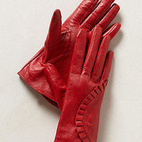 Historical Society Gloves