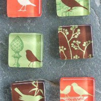 Bird Brigade square glass magnet set by CreativeLove on Etsy