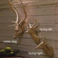 Carved Wood Deer Heads by Roost