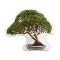 Bonsai Tree Printed Pillow