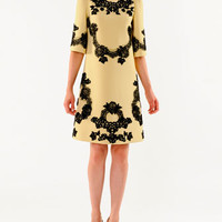 Dolce & Gabbana A-Line Lace Applique Dress