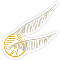 I've Got The Golden Snitch - Color