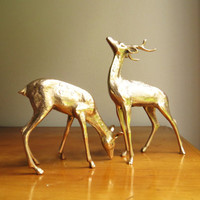 Vintage Brass Deer Figurines, Doe, Buck, Deer Family, Woodland Brass Animal, Reindeer Statues, Pair