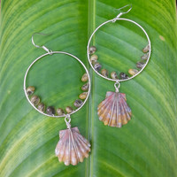 Sunrise Shell Sterling Silver Earrings Wire Wrapped Moonrise Shell