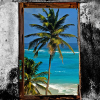 WINDOW ON PARADISE Art Print by catspaws
