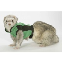 Marshall Ferret Fleece Tech Vest, Green