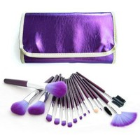 Frola Cosmetics Professional 16 PCS Makeup Brush Brushes Kit with Purple Leather Case Pouch Bag