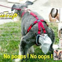The Poo Trap for Dogs