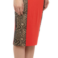 Lace Inset Pencil Skirt